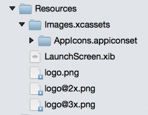 Typical iOS images resource structure